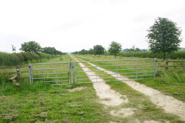 Cross Bucks Way - geograph.org.uk - 464765