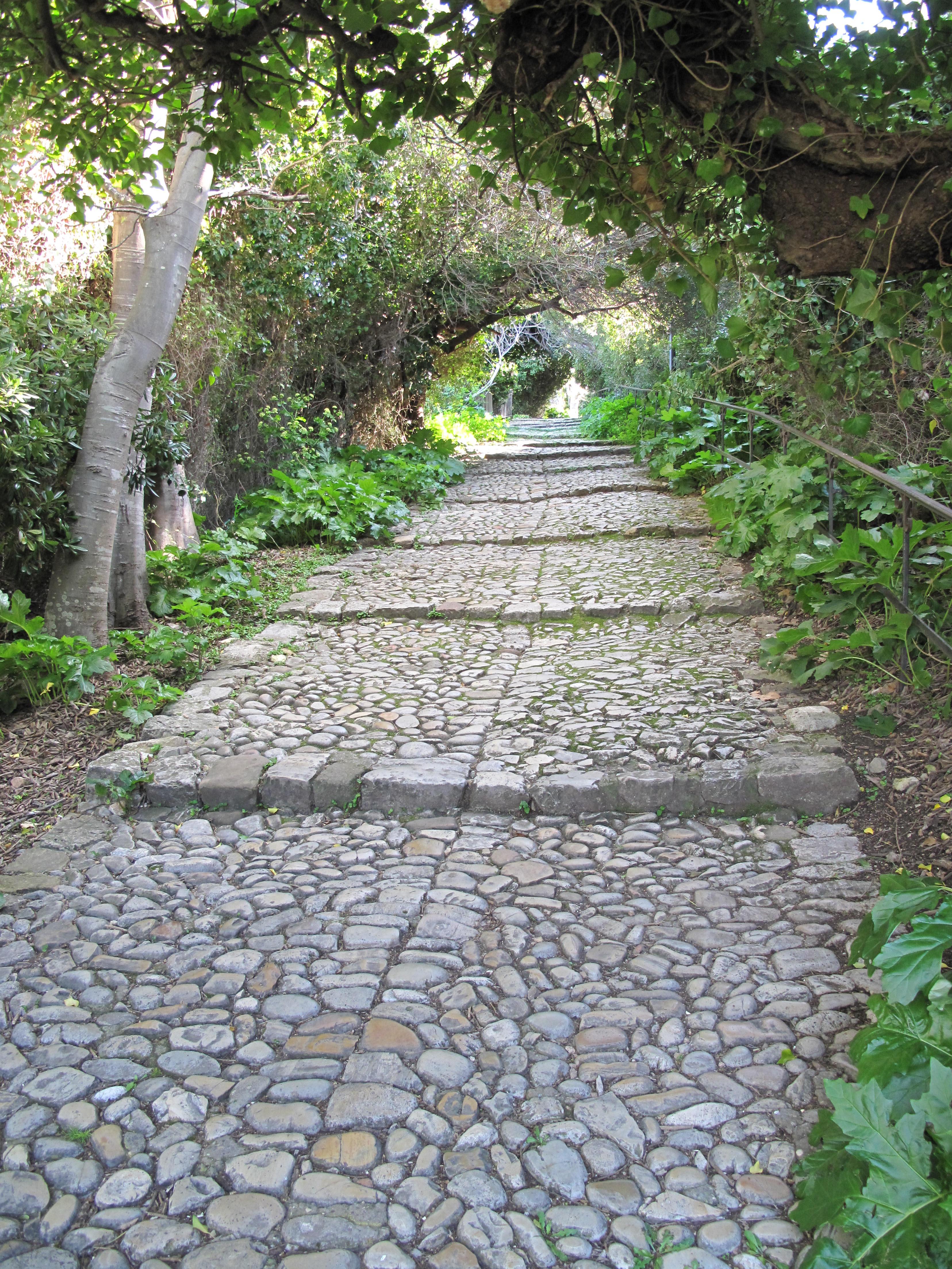 http://upload.wikimedia.org/wikipedia/commons/a/af/Escalier_%C3%A0_pas_d'ane_sur_l'ile_Sainte-Marguerite.jpg