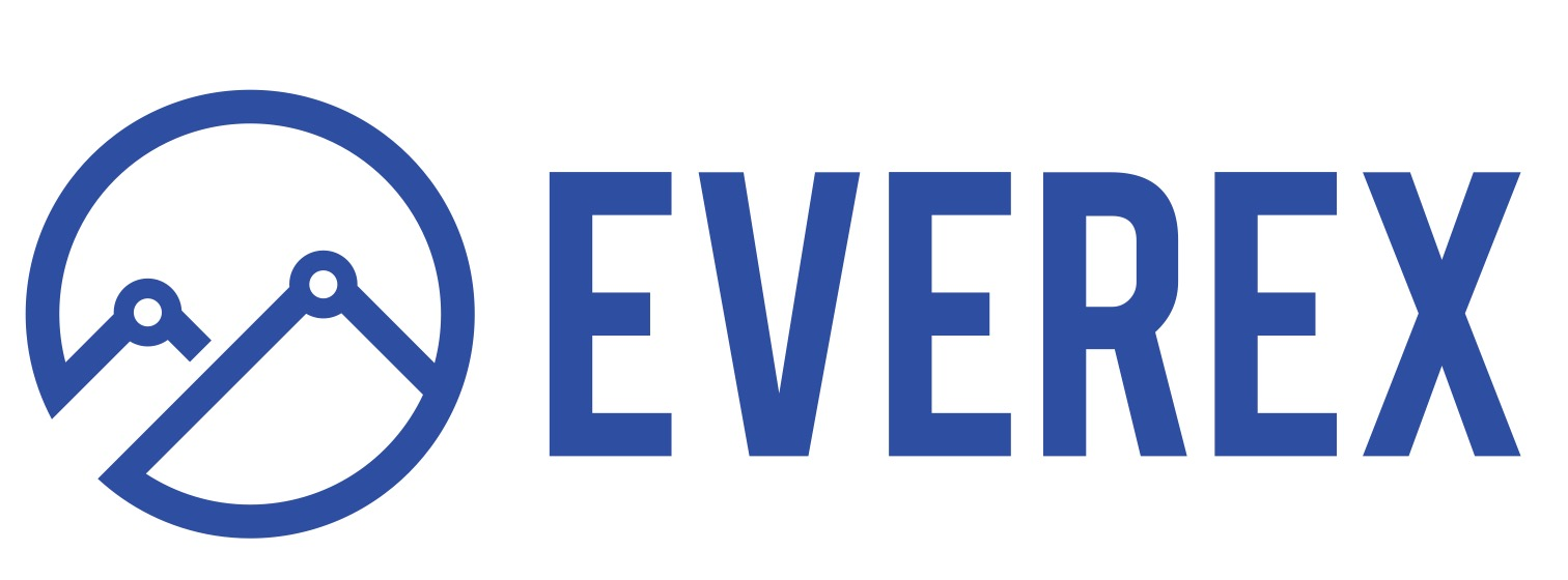 Image result for everex logo
