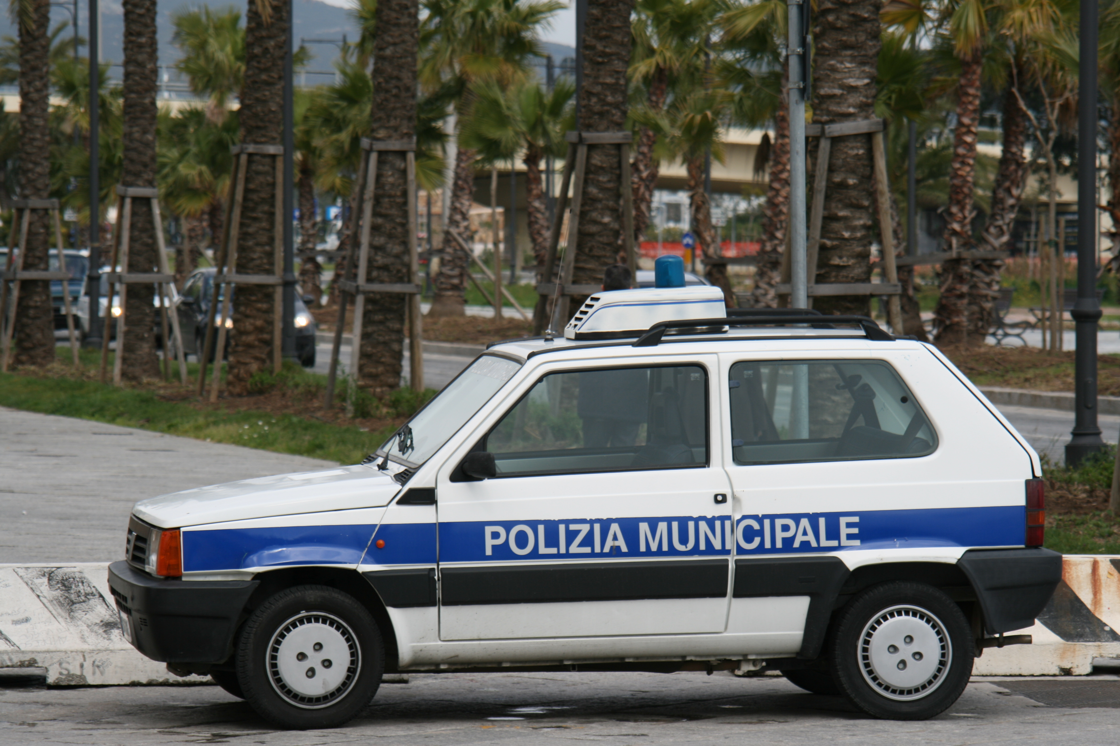 Used Car Police Book