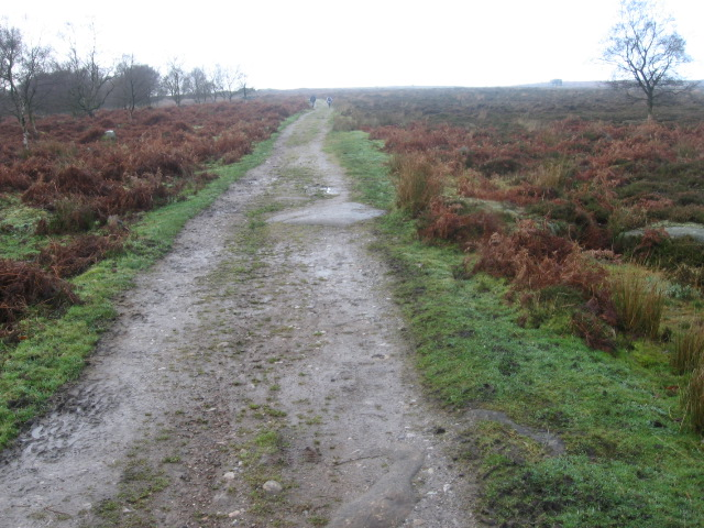 File:Footpath On Eaglestone Flat Towards Baslow Edge
