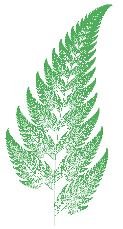 decorative graphic of a fern