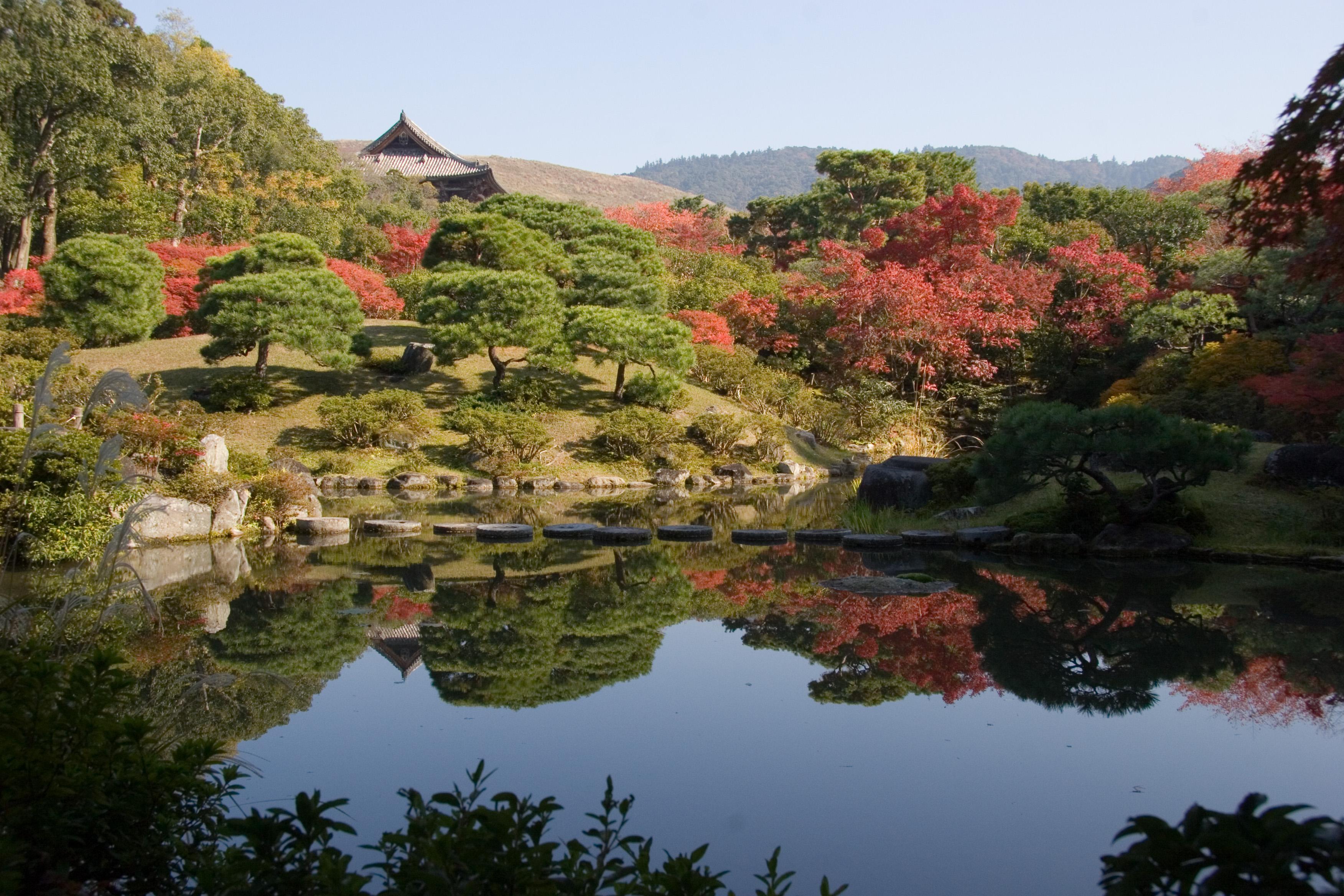 Jardins japonais for Jardin japonais