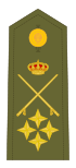 Capitán general