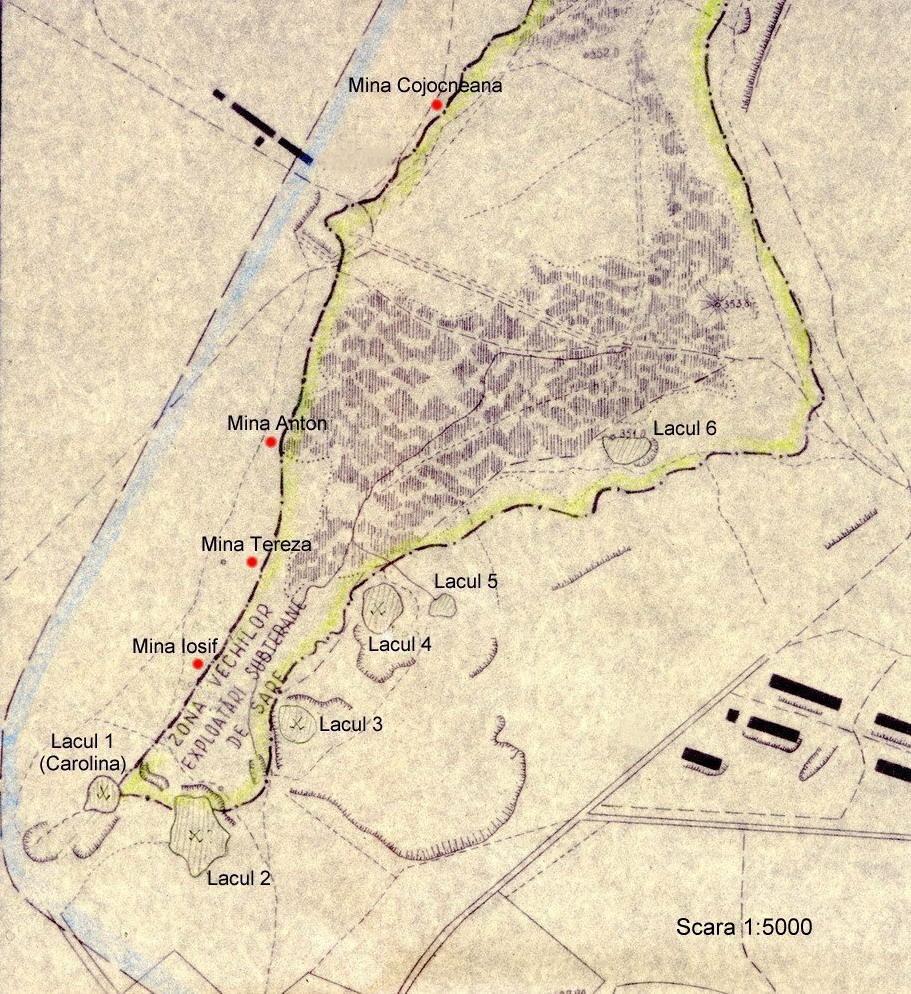 Salina Turda Wikipedia