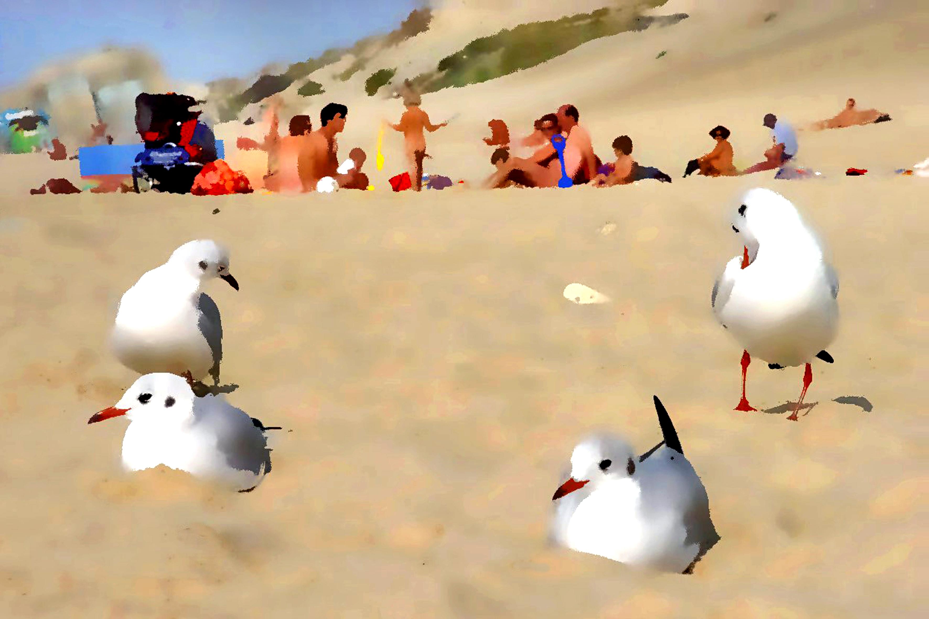 FKK-Strand Menschen Bilder
