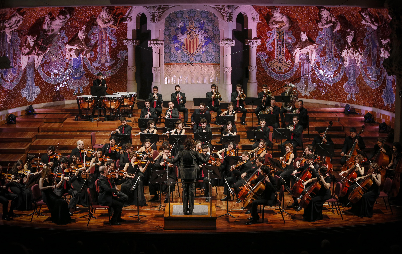 Picture of a band or musician: Orquestra Simfònica Camera Musicae