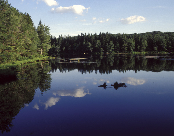 The lake Promised Land State Park in Pike Coun...