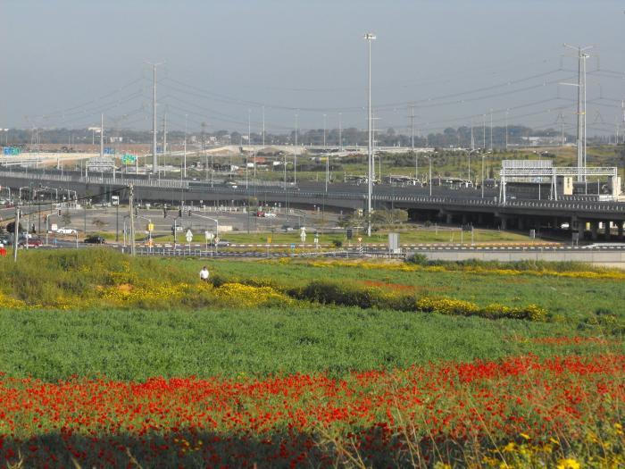 אביב ישראלי - 2009