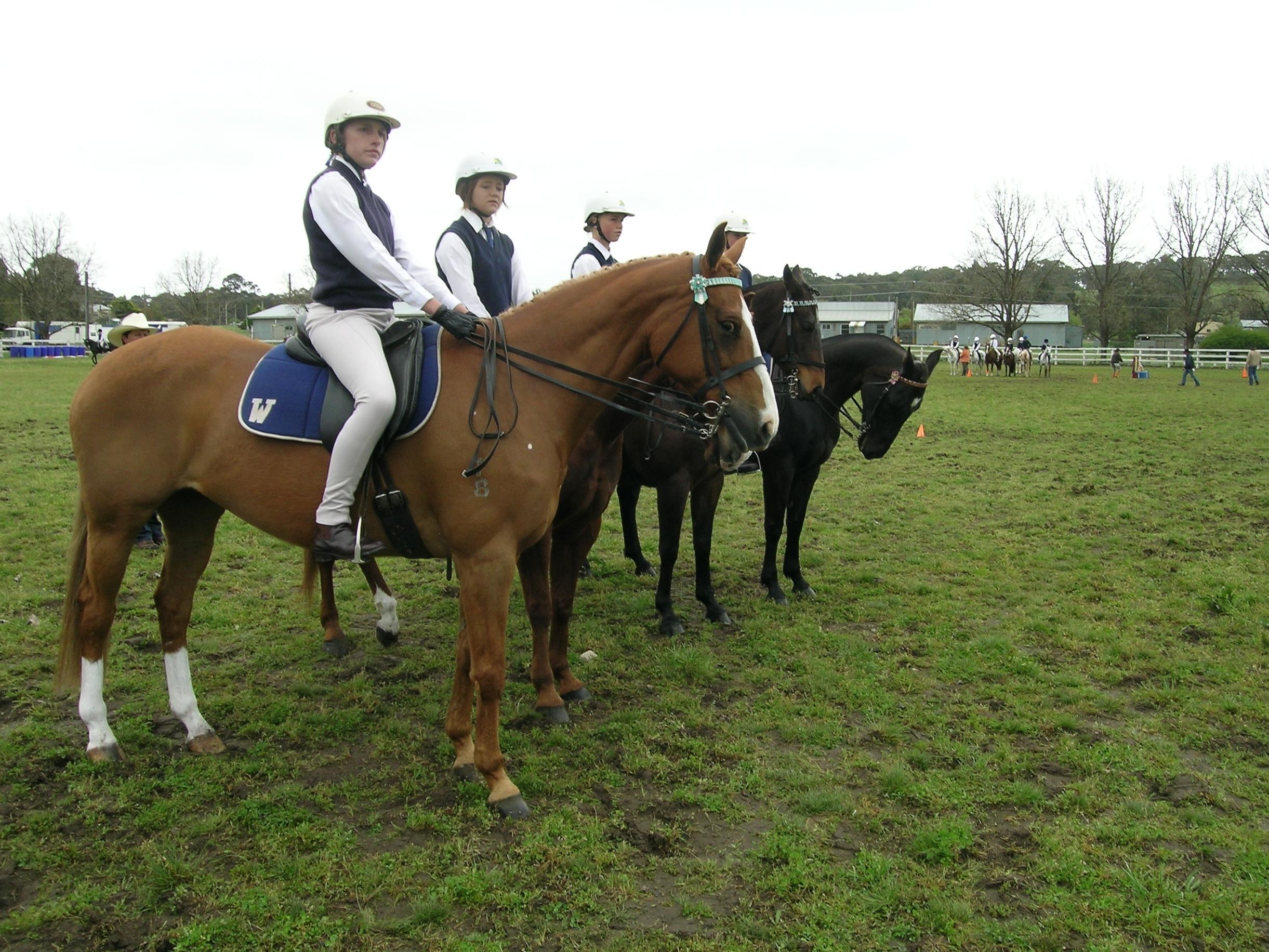 Pony Club Australia