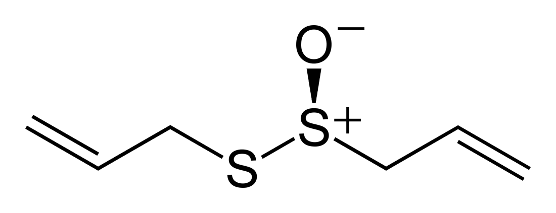 Allicin Wikipedia