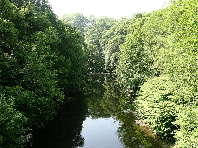 River Irwell, Brooksbottoms - geograph.org.uk - 464819