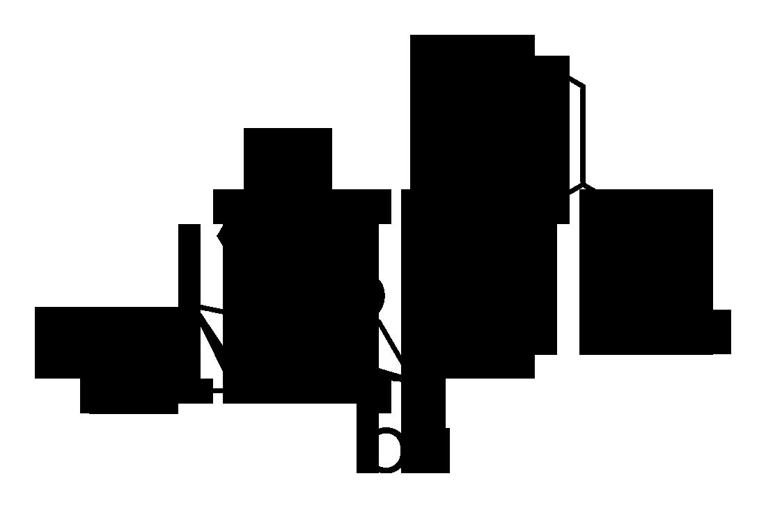 1 opy