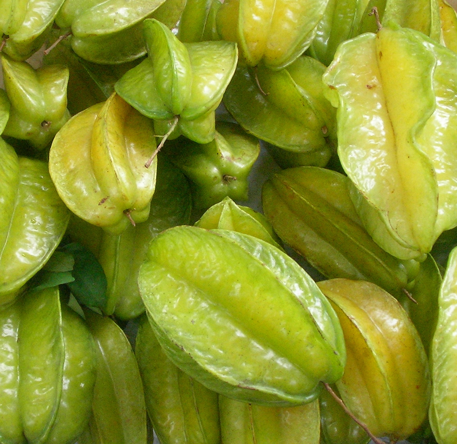 Starfruit, image from wikipedia