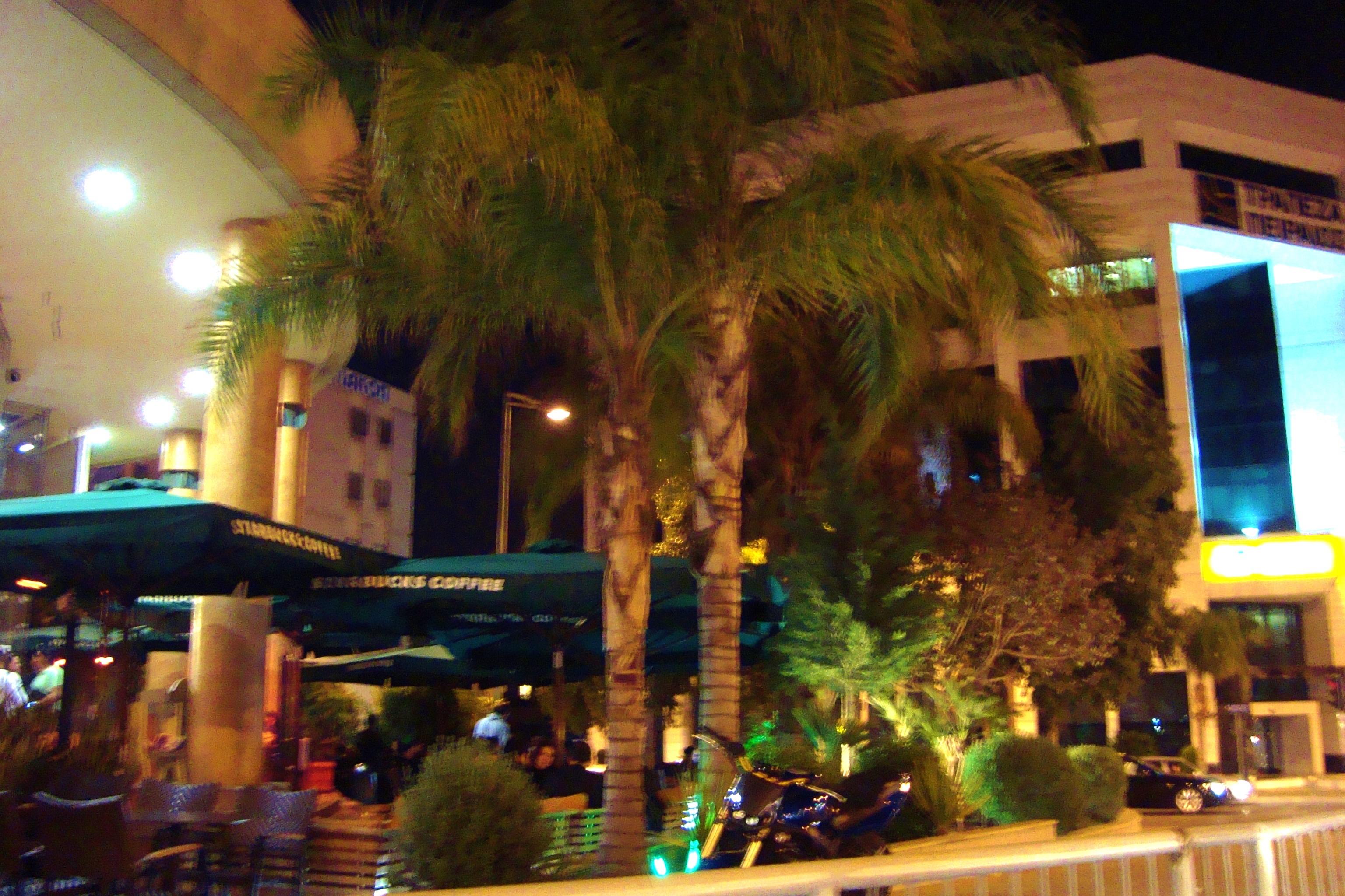 File:Starbucks coffee cafeteria in downtown Nicosia Republic