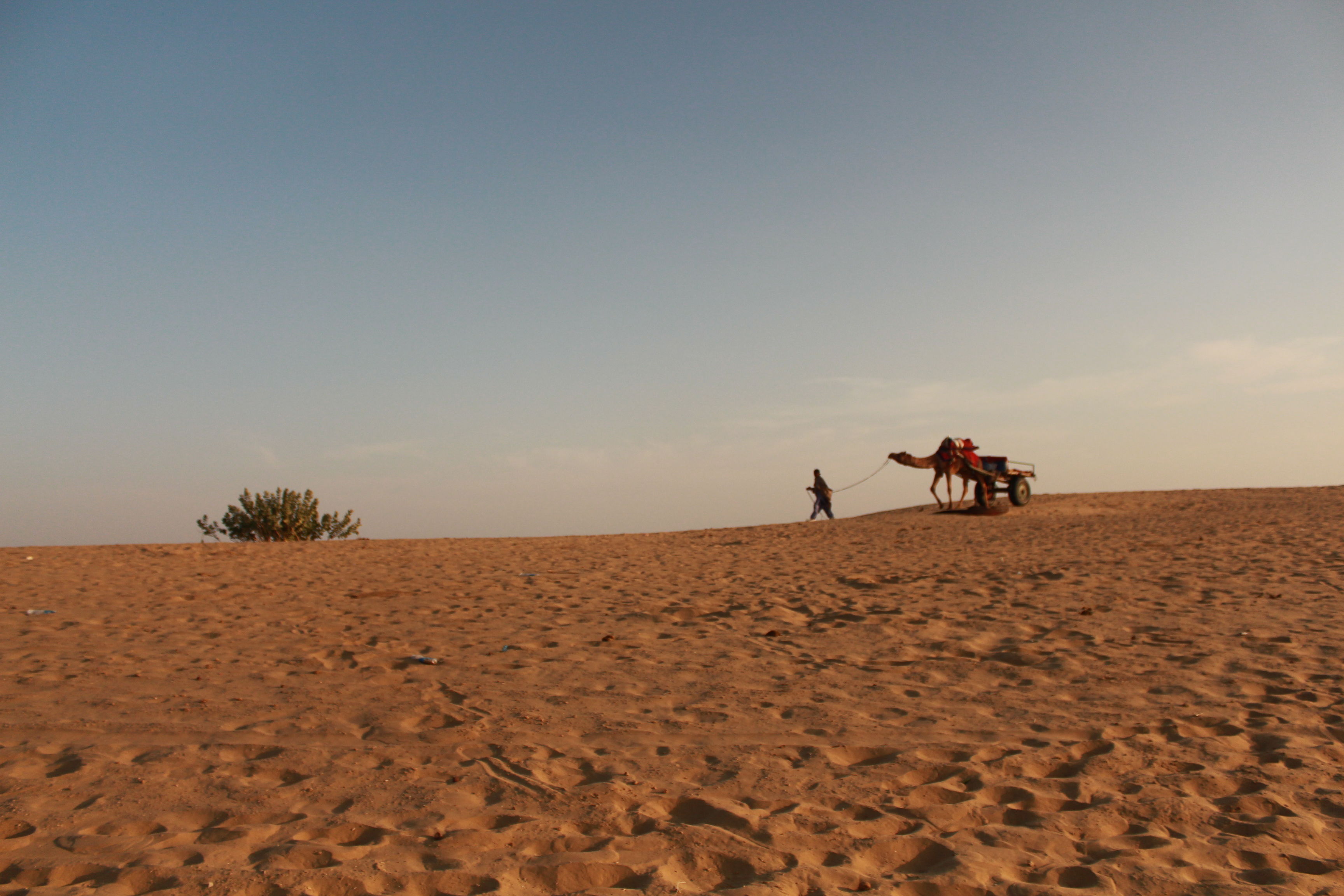thar desert country