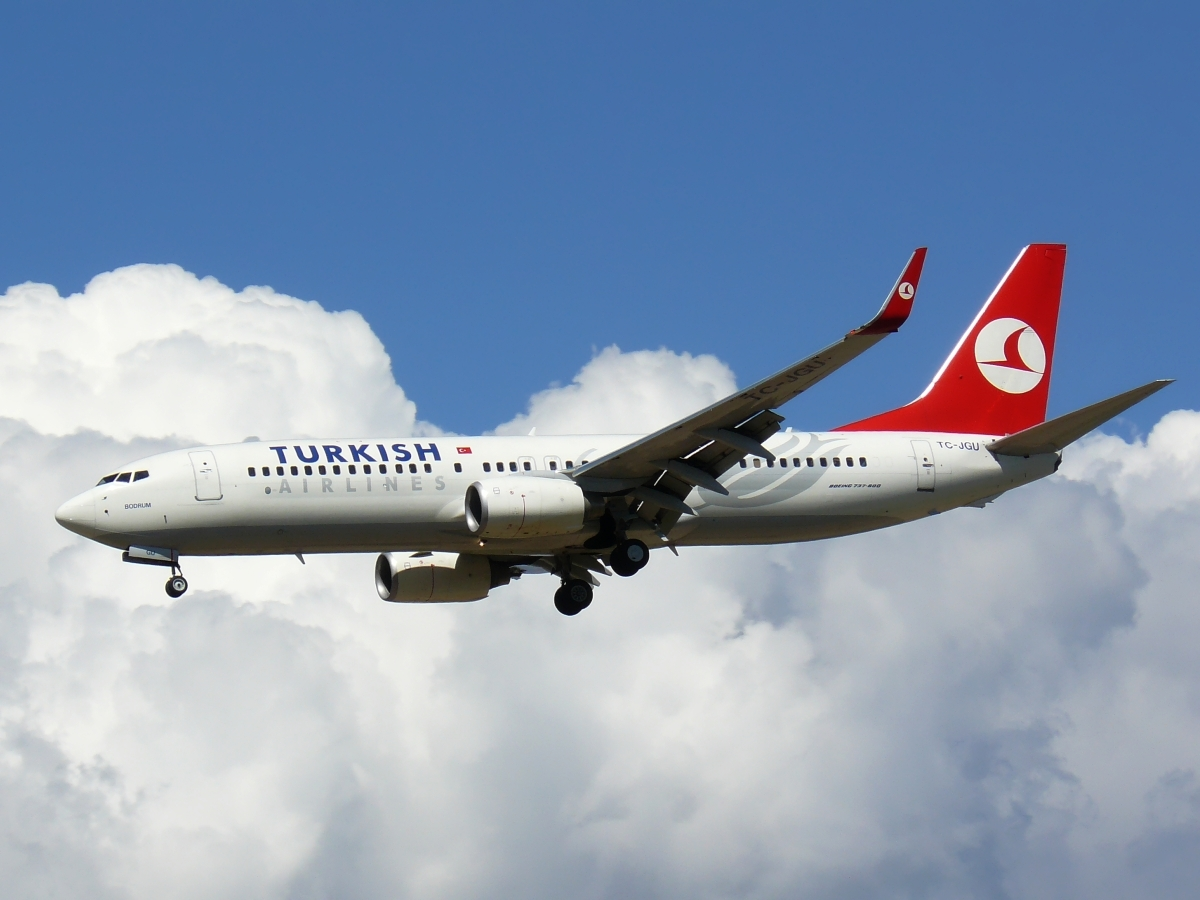 turkish airlines history and background Asiana airlines (iata: oz / icao: aar) is an airline based in seoul, korea, republic of founded in 1988 currently operating a fleet of 83 aircraft.