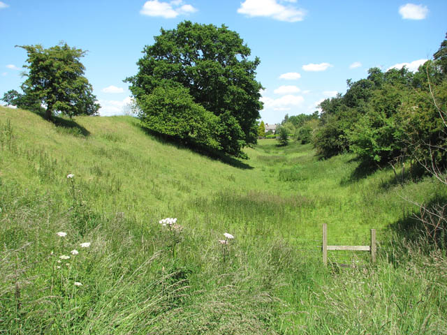 Venta Icenorum - ditch along east wall - geograph.org.uk - 1352692