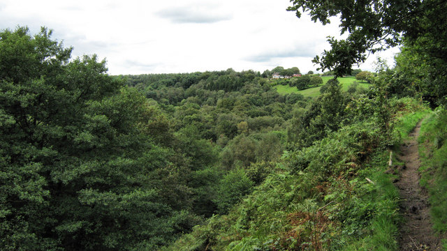 View across Consall Nature Park - geograph.org.uk - 1443607