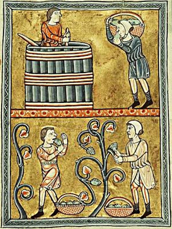 September: Weinlese in einem Psalter von ca. 1180. (Den Haag, Königliche Bibliothek, 76 F 13, fol. 9v.)