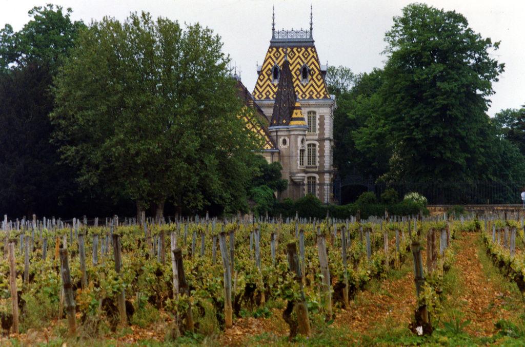 Aloxe-Corton dans Ma Bourgogne En détails 20070916095102!Aloxe-corton-21