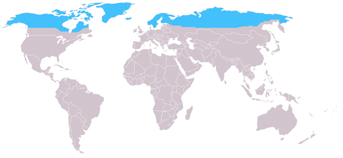 http://upload.wikimedia.org/wikipedia/commons/archive/1/14/20060106193153!Distribution_arctic_fox.jpg
