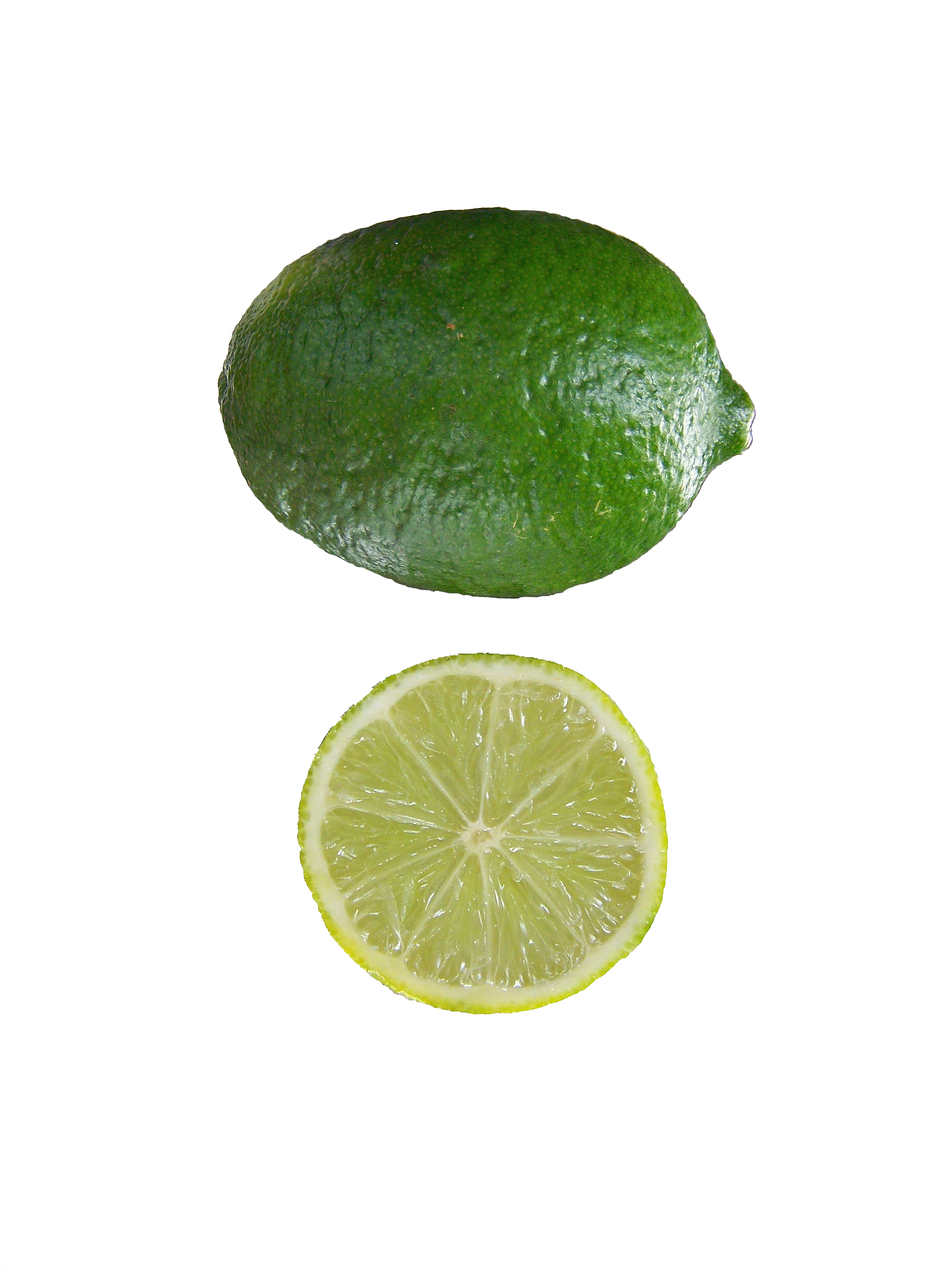 File:Citrus aurantifolia Mexican Lime.png - Wikipedia, the free ...