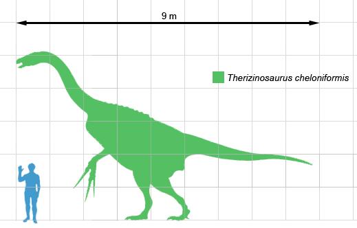 Spinosaurus vs Deinocheirus 20080509224808!Therizinosaurus_scale