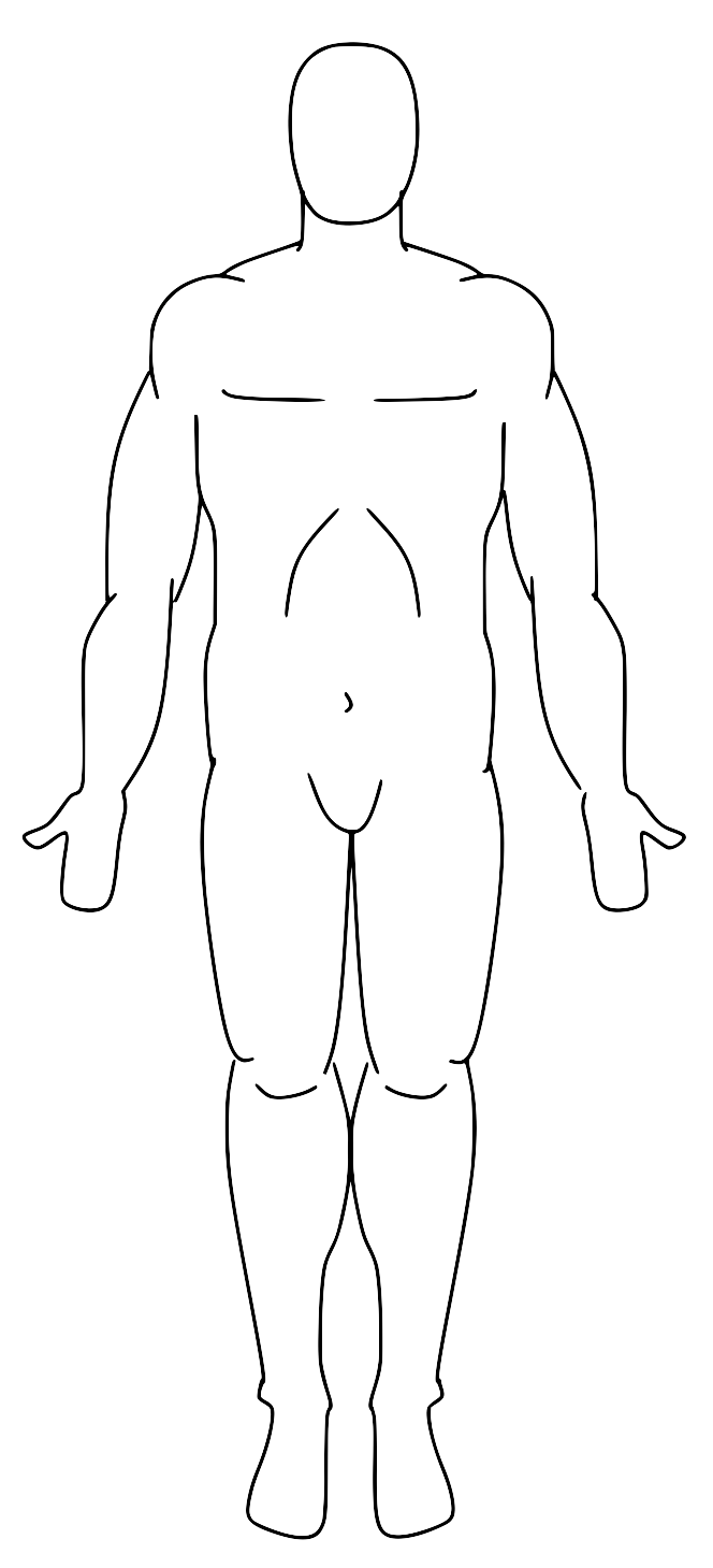 File:Anatomical Position.png - Wikimedia Commons