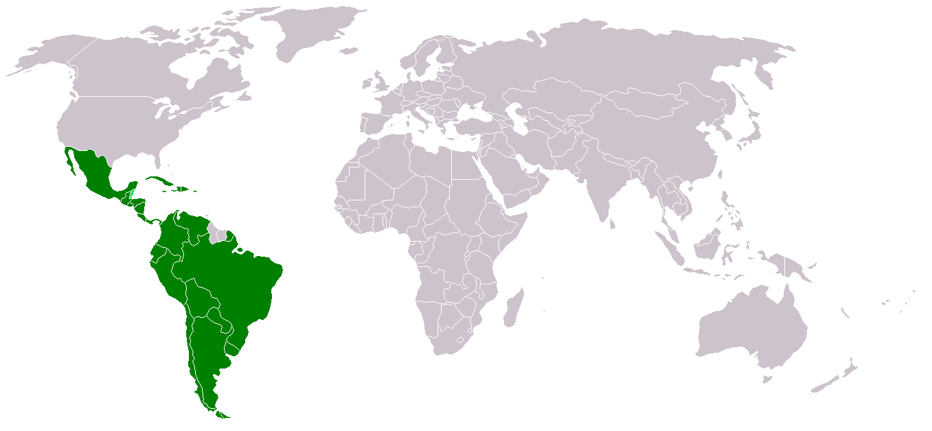 World map with Latin America highlighted in green