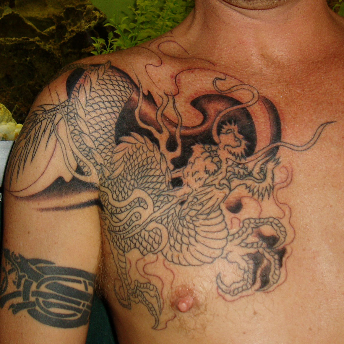 dragon tatoo,the red dragon <br />