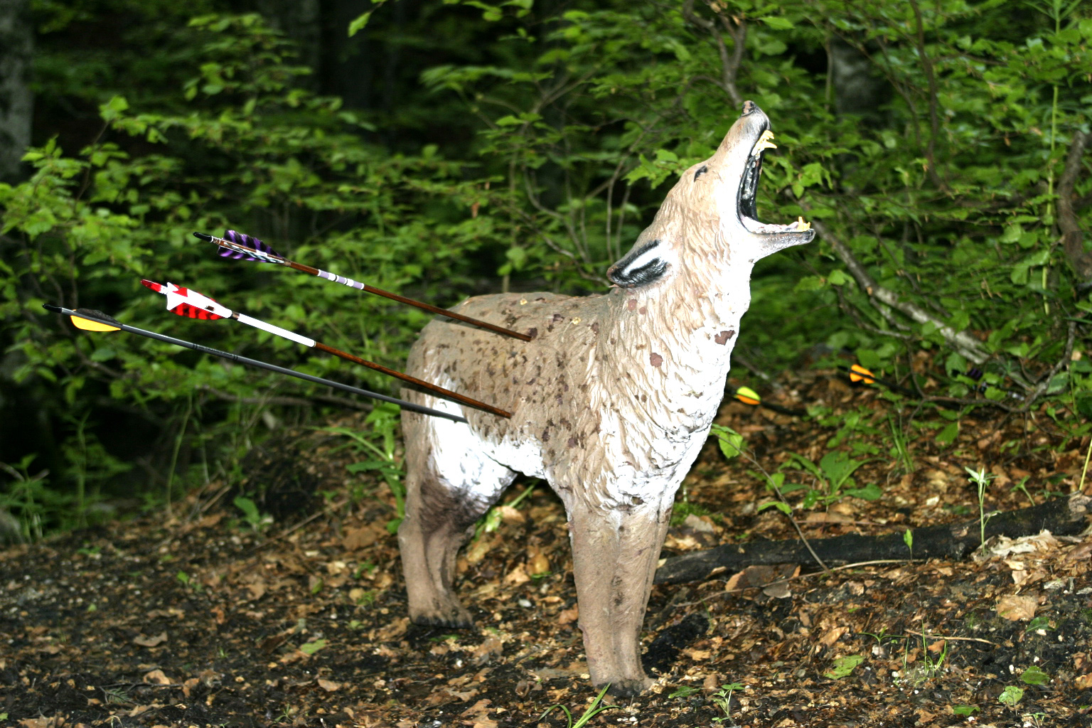 Online Hunting Games For Kids