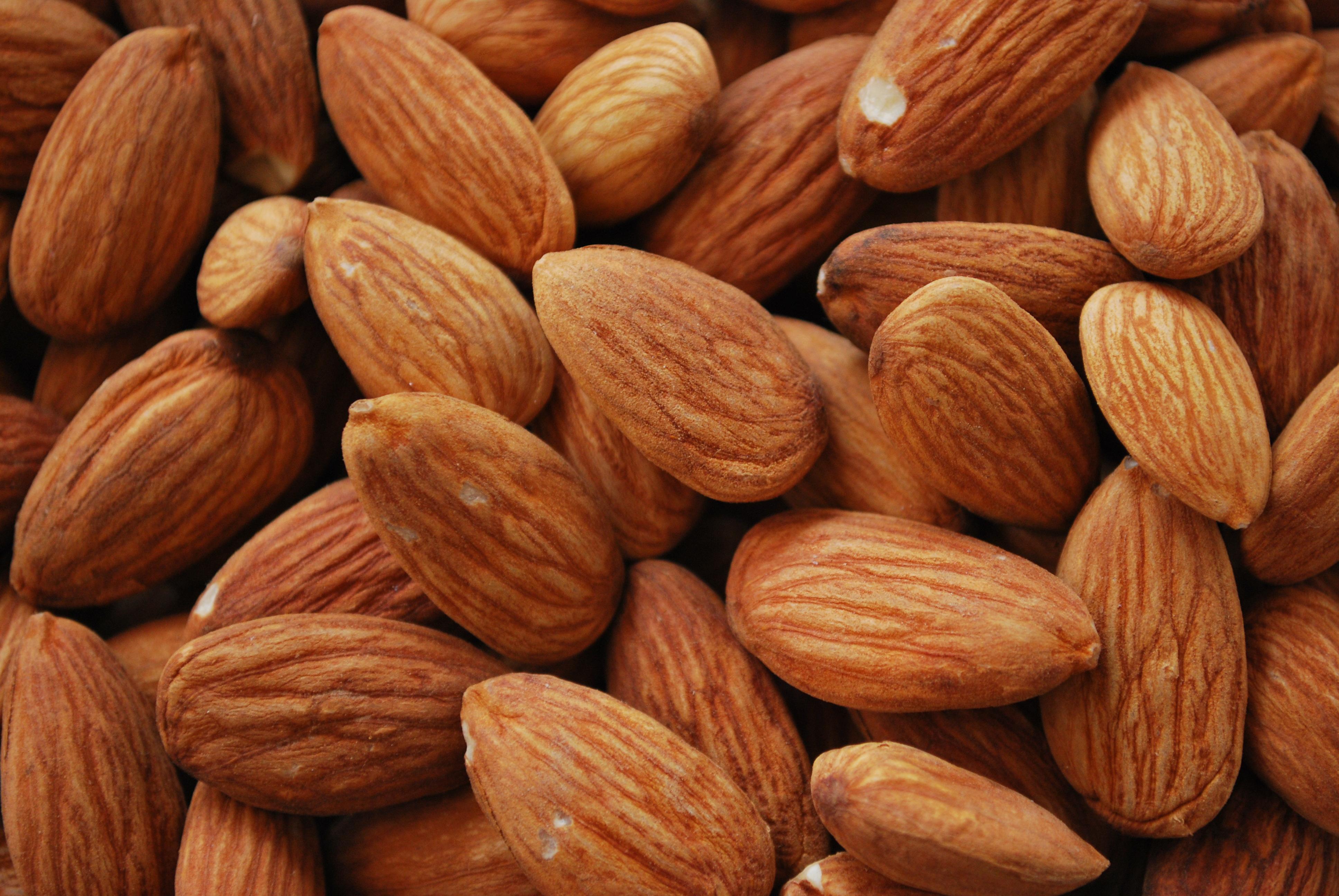 File almonds  g wikimedia commons