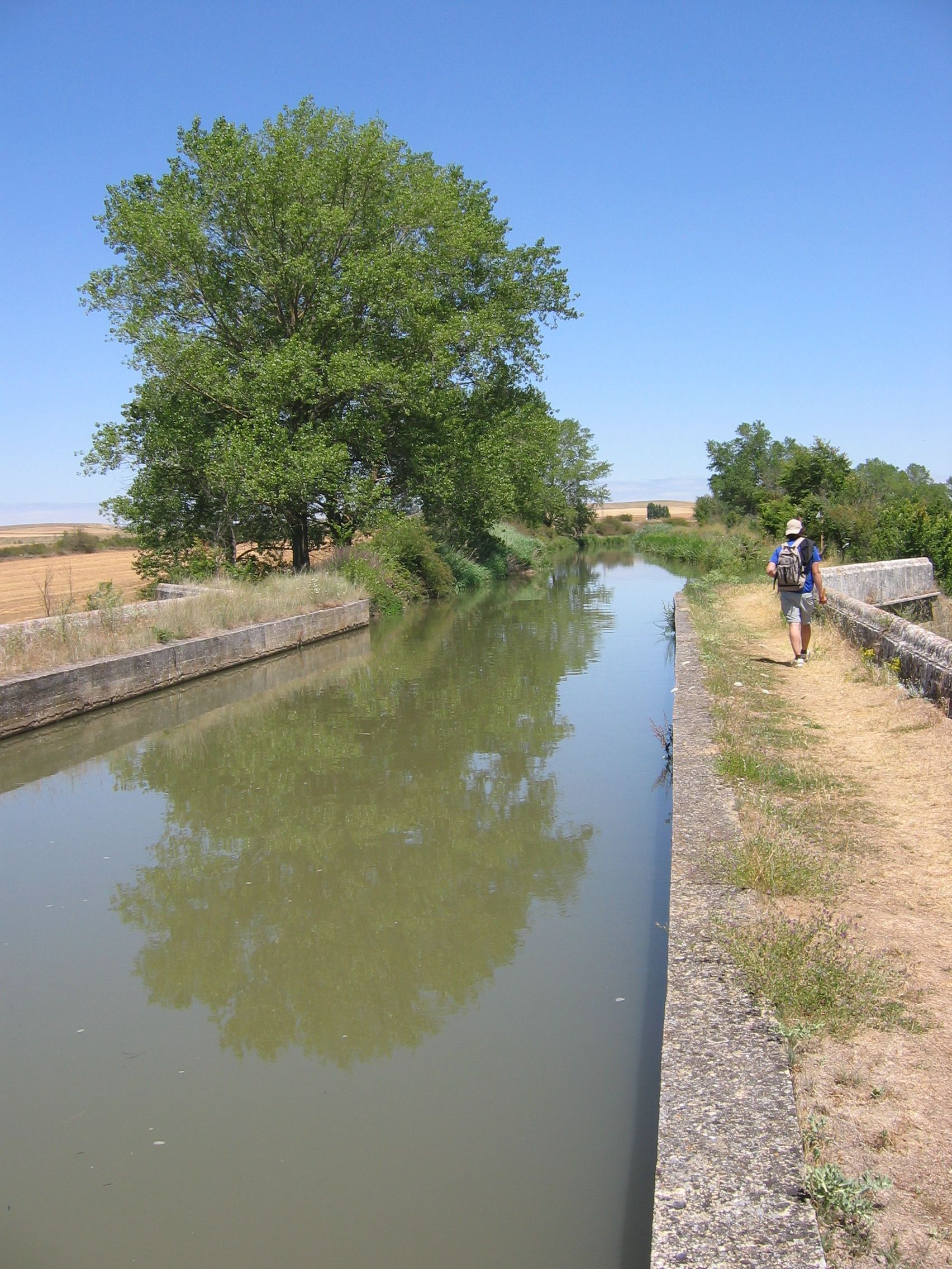 Canal regional osorno online dating