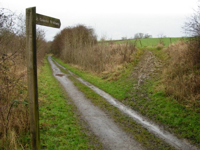 File:Bridleway to Great Oxendon - geograph.org.uk - 301423.jpg