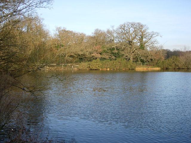 Cemetery Lake, Southampton Common - geograph.org.uk - 1039747