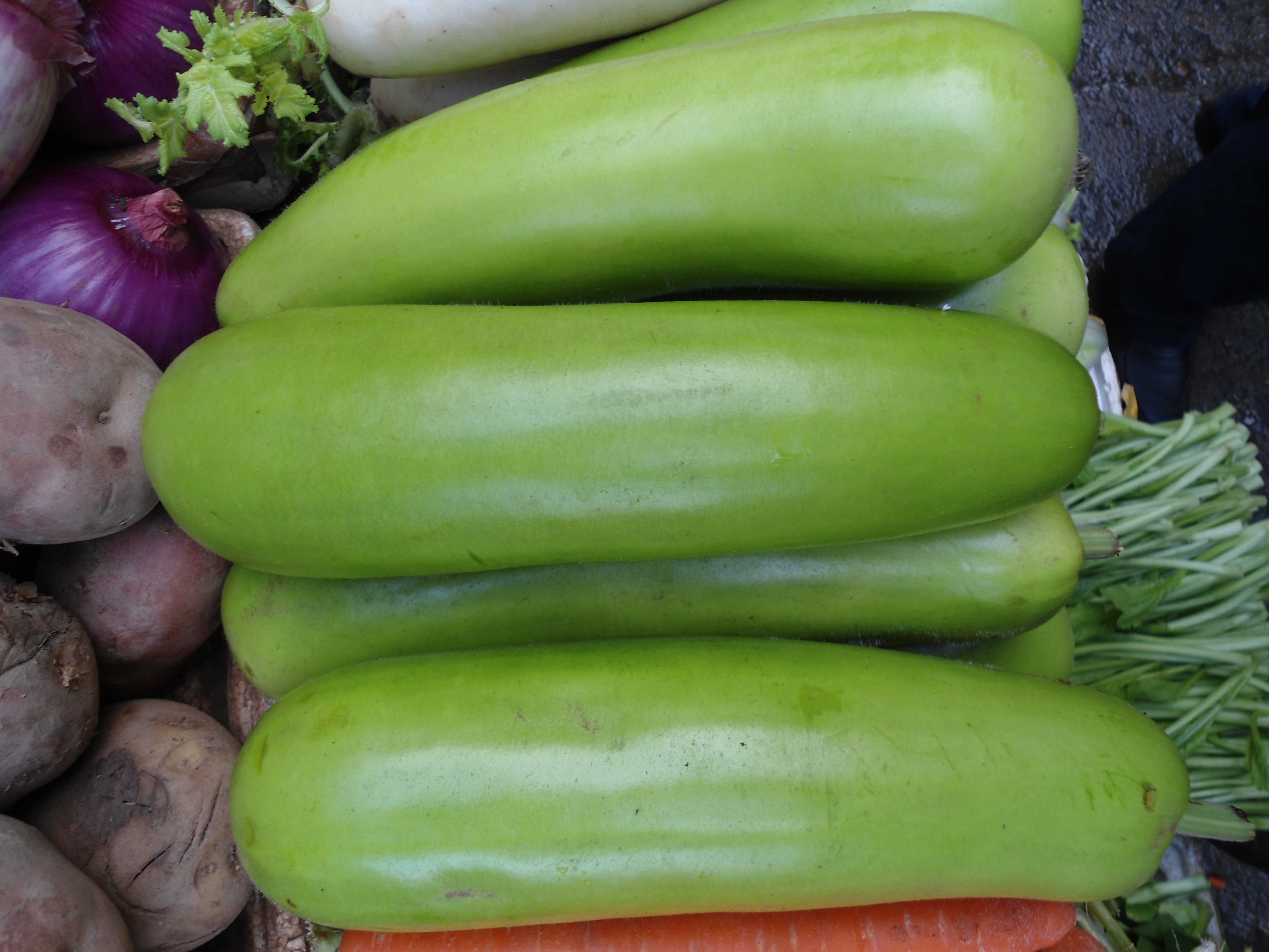 Image Result For What Vegetables Can