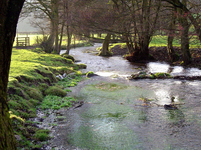 Dalby Beck - geograph.org.uk - 192422