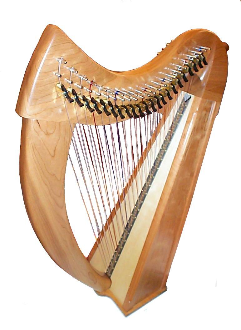 Double_harp.JPG