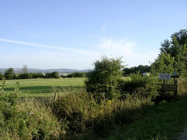 Field at Lower Exbury - geograph.org.uk - 33288