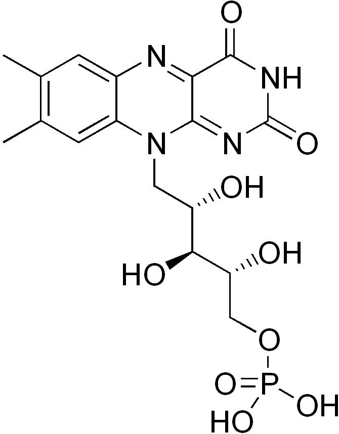 Flavin Mononucleotide