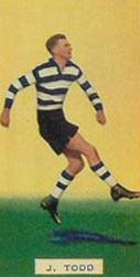 1931 VFL season