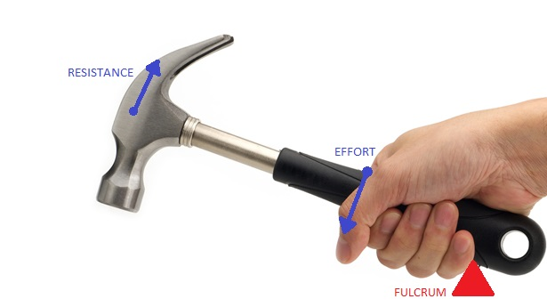 Filehammer Lever Diagramg Wikimedia Commons