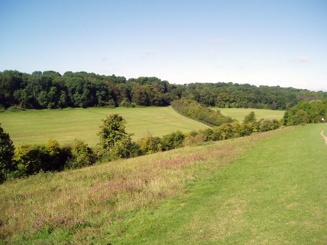 Happy Valley, Farthing Downs, Coulsdon ,Surrey - geograph.org.uk - 868141