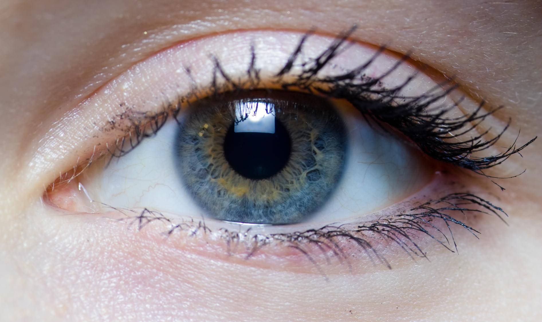 Hd Human Eye Iris File...