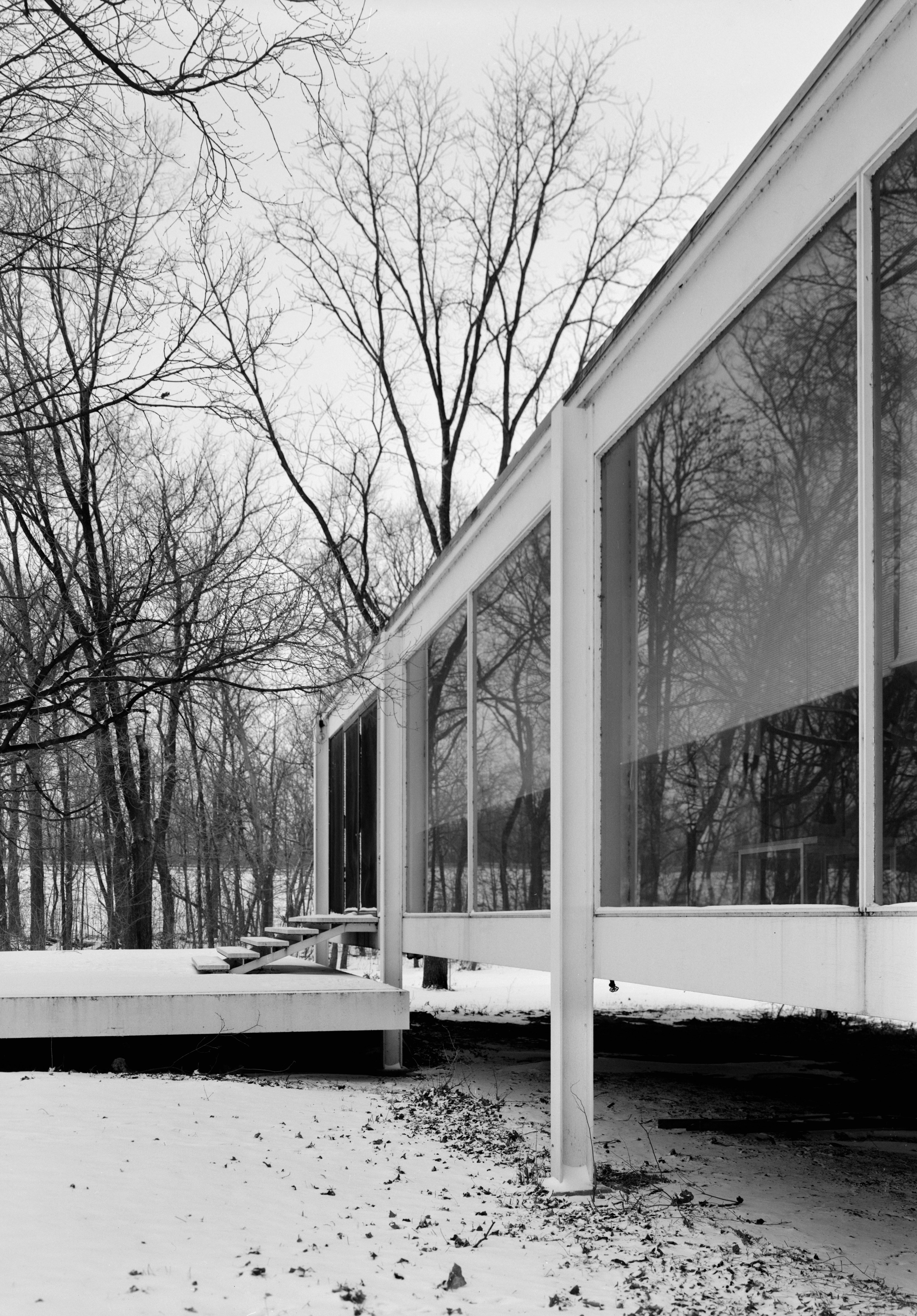 description mies van der rohe photo farnsworth house plano usa. Black Bedroom Furniture Sets. Home Design Ideas