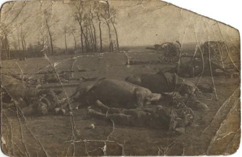 British dead at Le Cateau