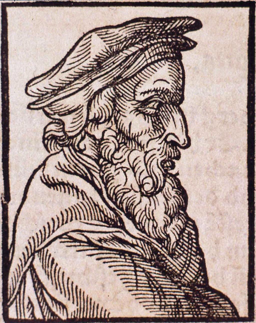 Dasypodius