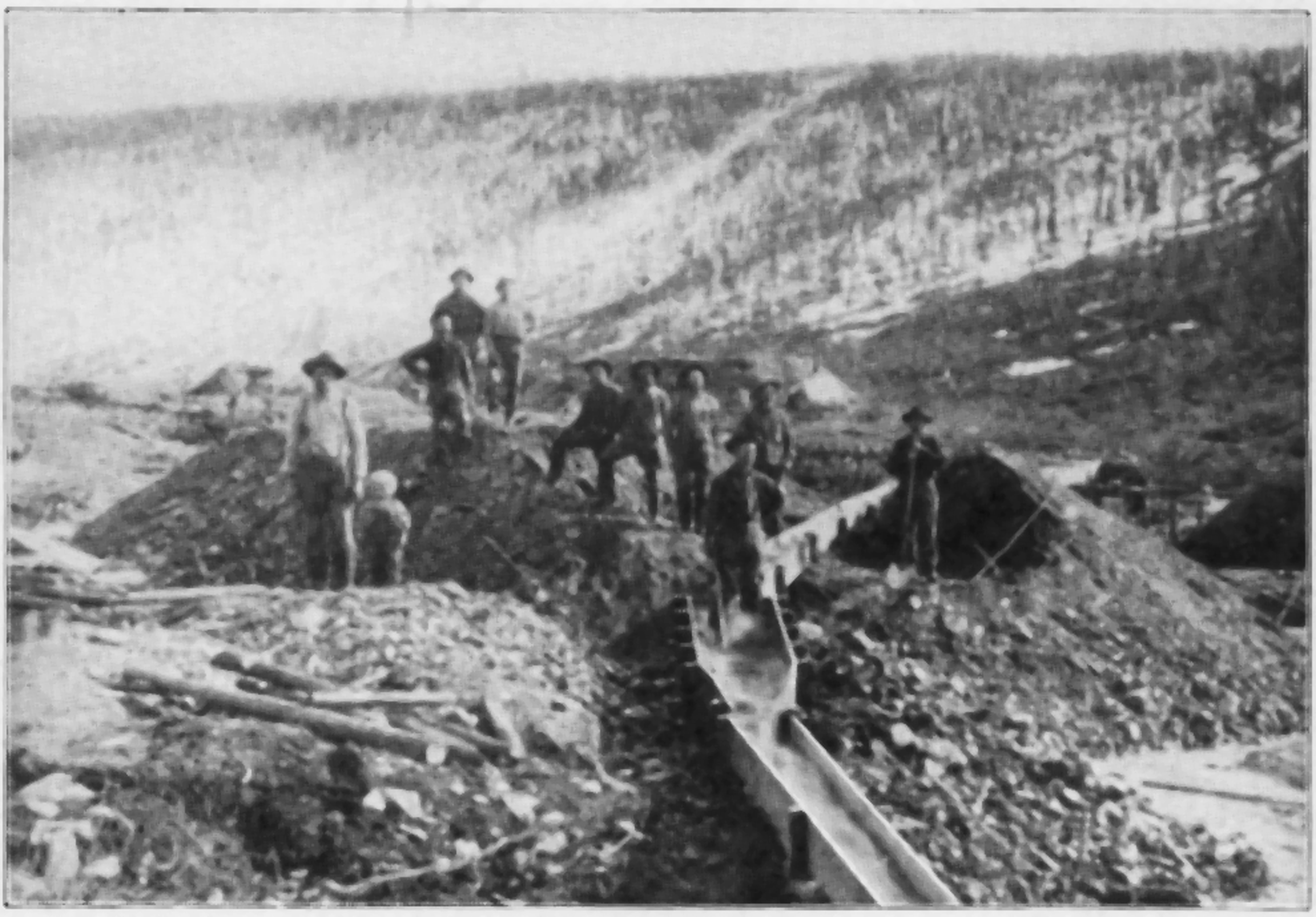 a review of the klondike gold rush This classic in yukon gold rush literature was originally published in 1900 and has long been out of print the klondike stampede rarely received the attention it deserved librarything review.