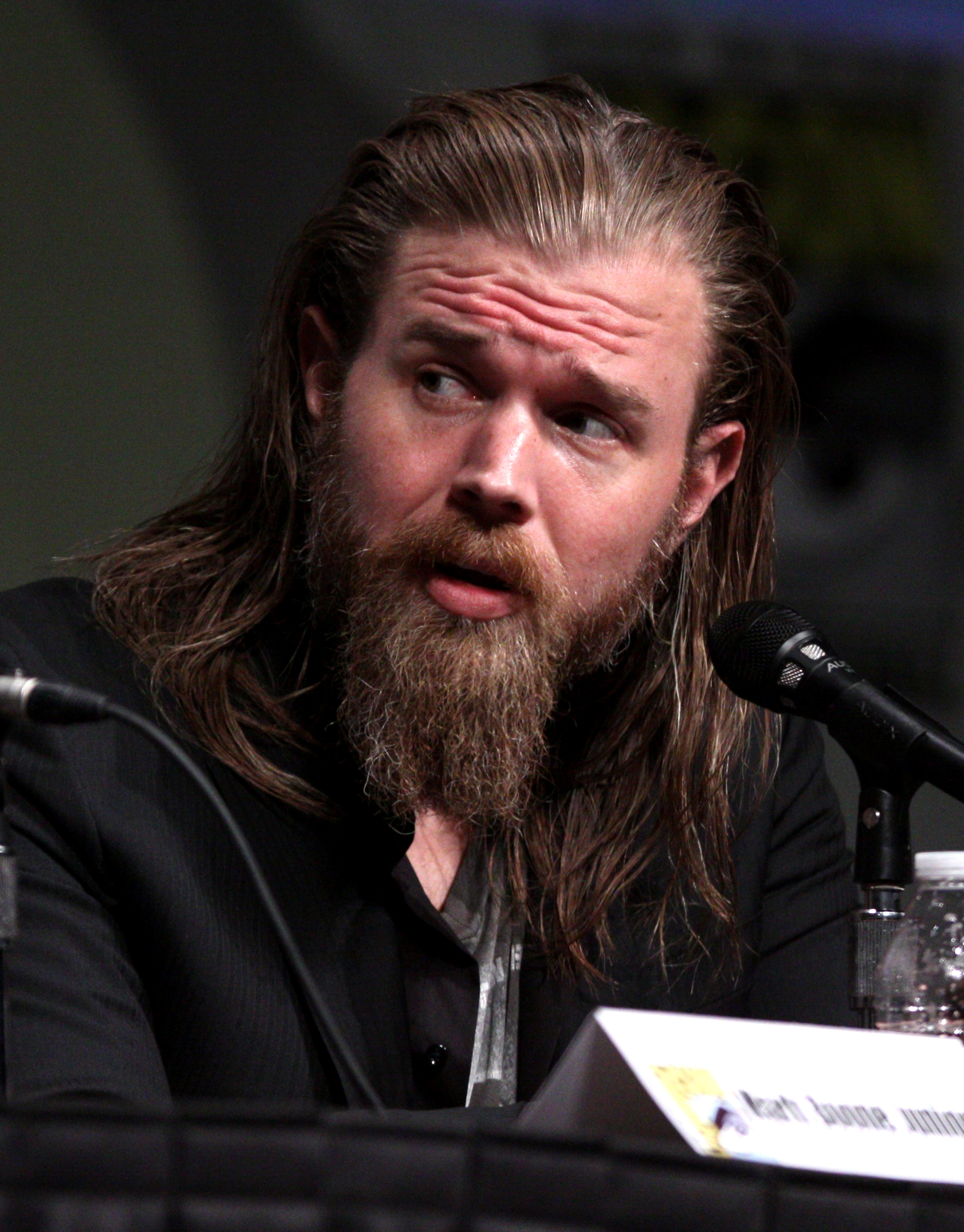 The 41-year old son of father Rick Hurst  and mother Candace Kaniecki, 193 cm tall Ryan Hurst in 2017 photo